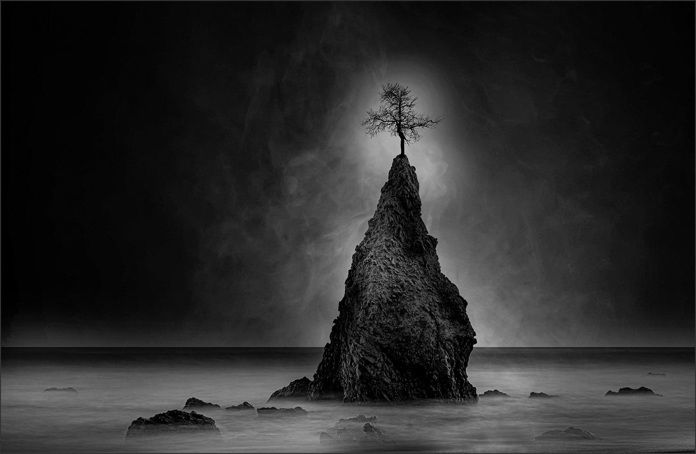 36Open_Alex_Mladenovic_1_Requiem_For_The_Nature